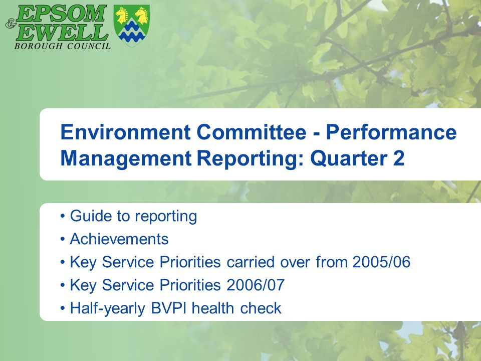 Environment Committee - Performance Management Reporting: Quarter 2 Guide to reporting Achievements Key Service Priorities carried over from 2005/06 K