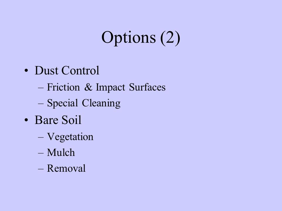 Options (2) Dust Control –Friction & Impact Surfaces –Special Cleaning Bare Soil –Vegetation –Mulch –Removal