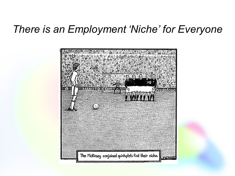 There is an Employment 'Niche' for Everyone