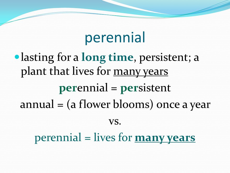 perennial lasting for a long time, persistent; a plant that lives for many years perennial = persistent annual = (a flower blooms) once a year vs.