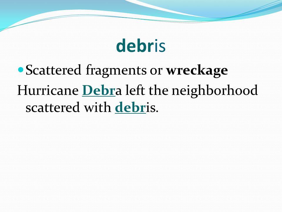 debris Scattered fragments or wreckage Hurricane Debra left the neighborhood scattered with debris.