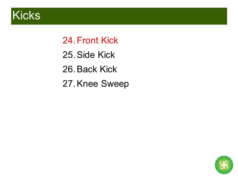 Kicks 24.Front Kick 25.Side Kick 26.Back Kick 27.Knee Sweep