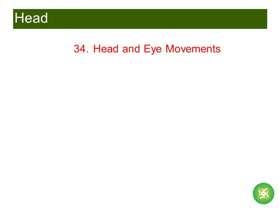 Head 34. Head and Eye Movements