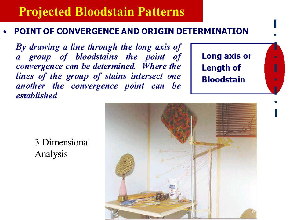 POINT OF CONVERGENCE AND ORIGIN DETERMINATION 2 Dimensional Analysis Projected Bloodstain Patterns