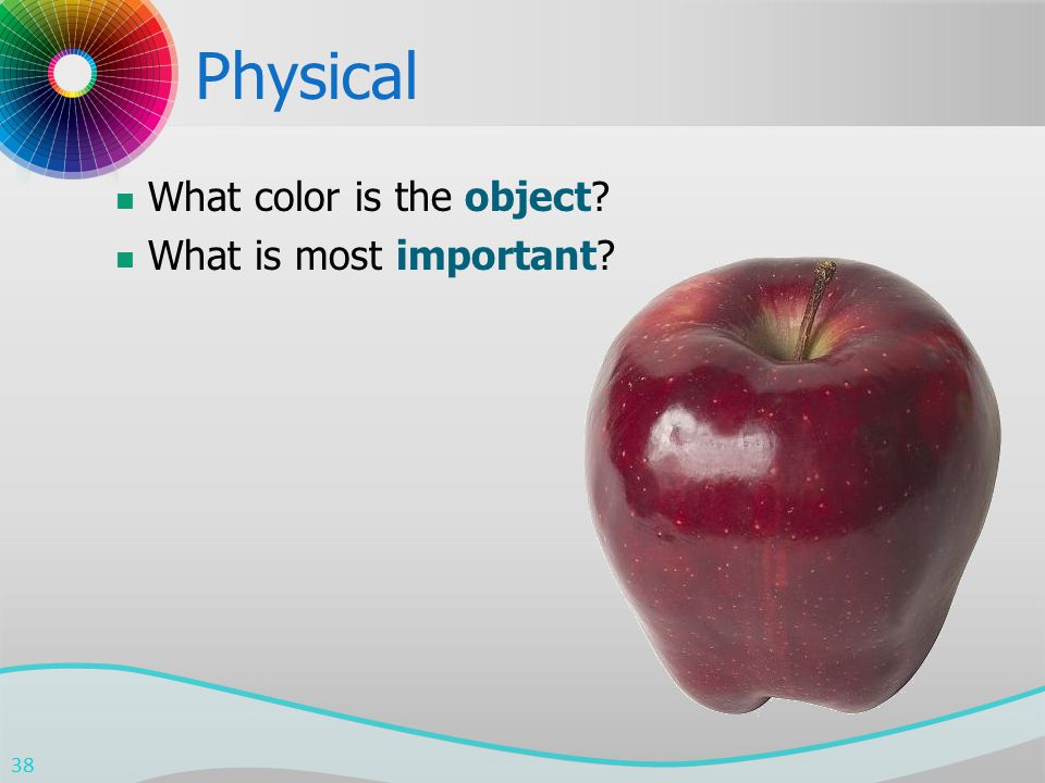 Physical What color is the object What is most important 38