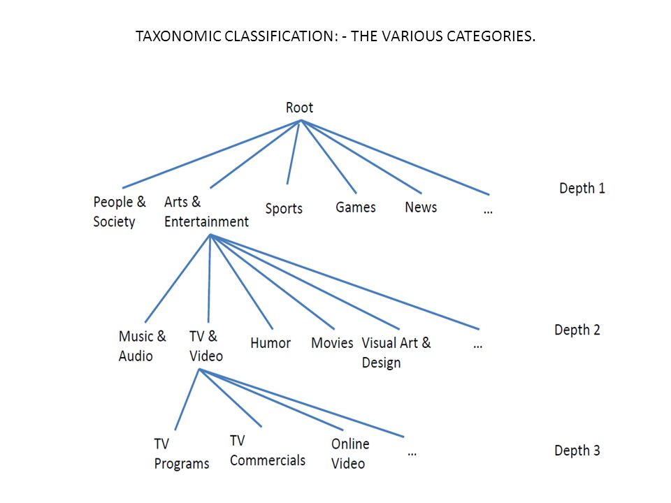 TAXONOMIC CLASSIFICATION: - THE VARIOUS CATEGORIES.