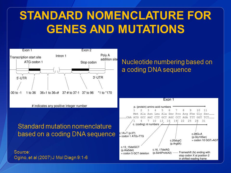 STANDARD NOMENCLATURE FOR GENES AND MUTATIONS Nucleotide numbering based on a coding DNA sequence Standard mutation nomenclature based on a coding DNA sequence Source: Ogino, et al (2007) J Mol Diagn 9:1-6