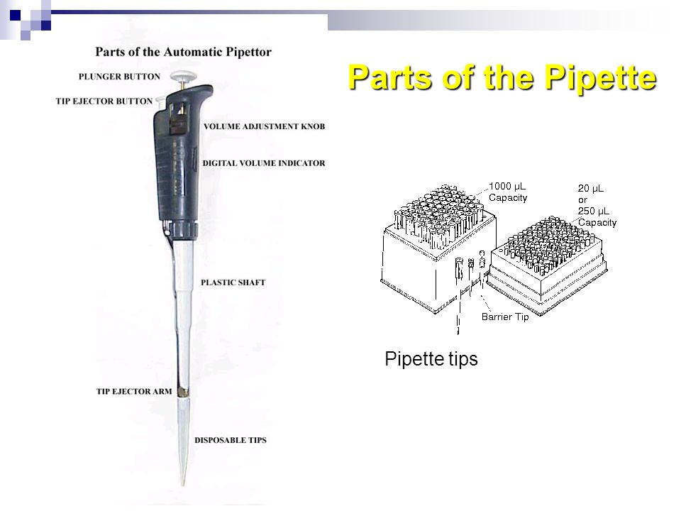 Parts of the Pipette Pipette tips