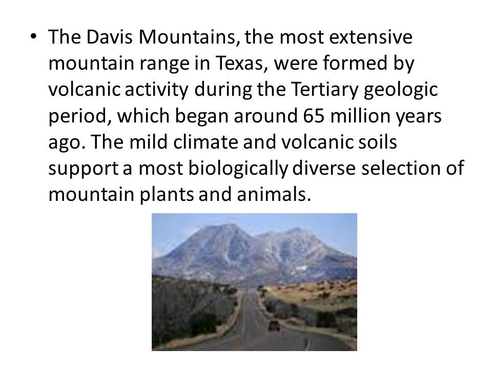 The Davis Mountains, the most extensive mountain range in Texas, were formed by volcanic activity during the Tertiary geologic period, which began aro