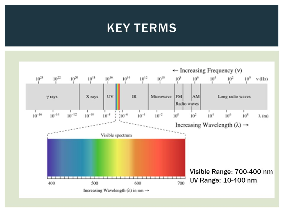 KEY TERMS Visible Range: 700-400 nm UV Range: 10-400 nm
