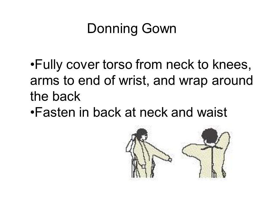 Fully cover torso from neck to knees, arms to end of wrist, and wrap around the back Fasten in back at neck and waist Donning Gown