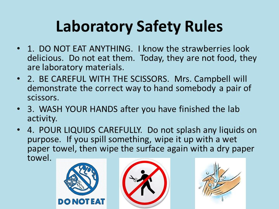 Laboratory Safety Rules 1. DO NOT EAT ANYTHING. I know the strawberries look delicious. Do not eat them. Today, they are not food, they are laboratory