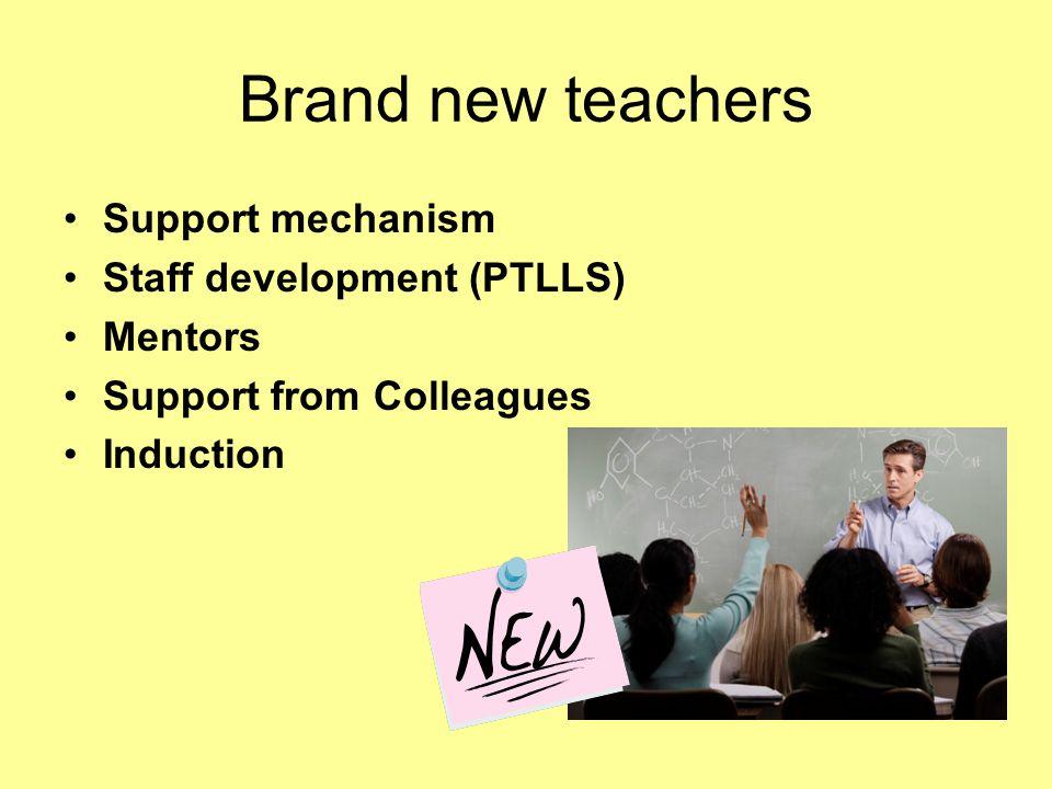 Brand new teachers Support mechanism Staff development (PTLLS) Mentors Support from Colleagues Induction