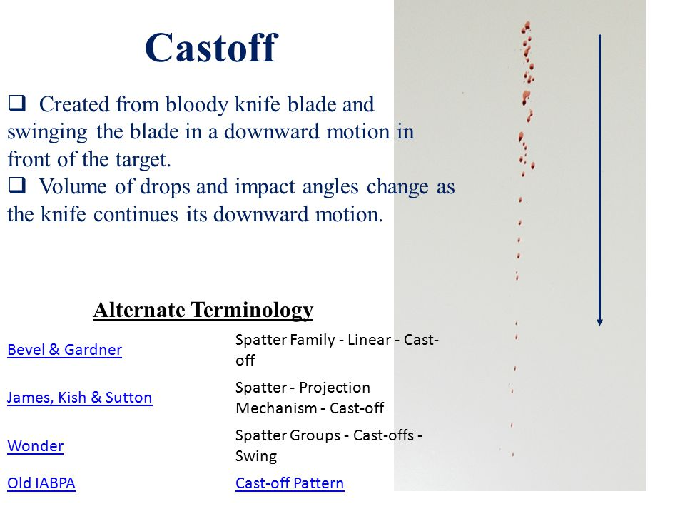 Bevel & Gardner Spatter Family - Linear - Cast- off James, Kish & Sutton Spatter - Projection Mechanism - Cast-off Wonder Spatter Groups - Cast-offs - Swing Old IABPACast-off Pattern  Created from bloody knife blade and swinging the blade in a downward motion in front of the target.