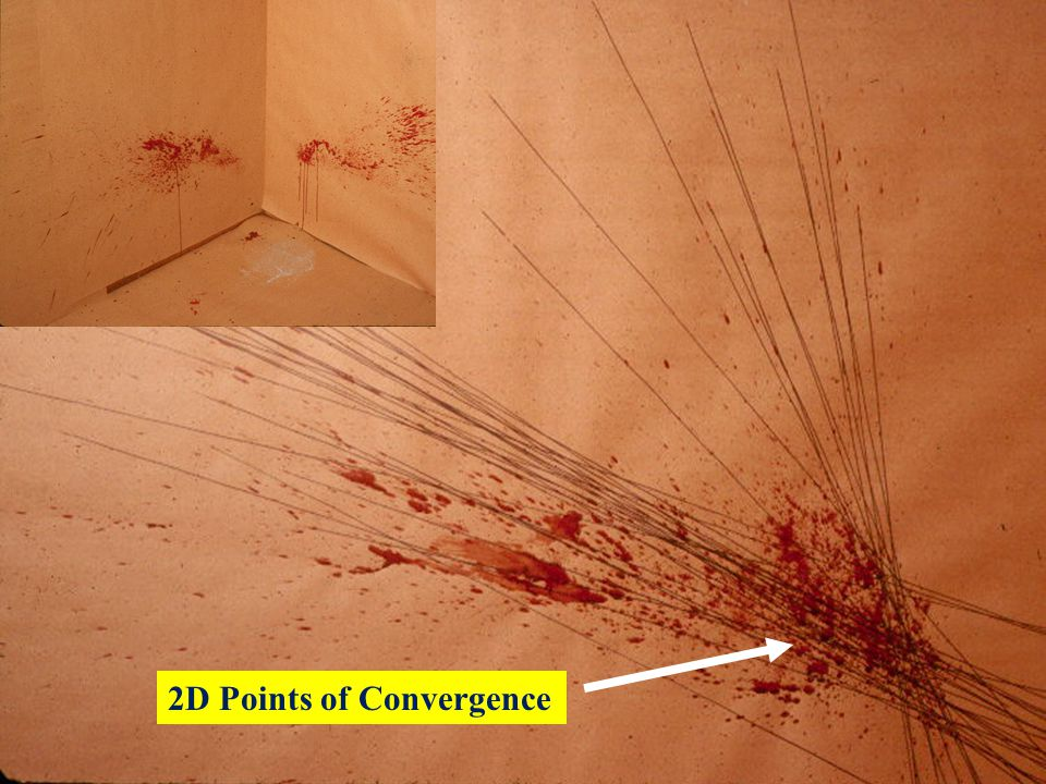 2D Points of Convergence