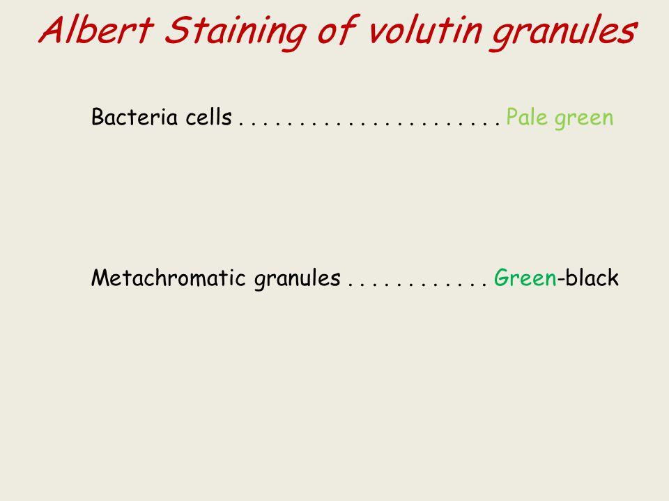 Albert Staining of volutin granules Bacteria cells......................