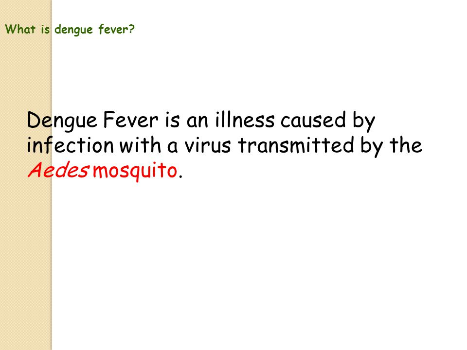 Contents 1.What is dengue fever 2.Symptoms of dengue fever 3.Characteristics of the Aedes mosquito 4.Life cycle of the Aedes mosquito 5.How the Aedes mosquito transmit diseases 6.How to prevent the spread of dengue fever 7.The 10-Mininute Mozzie Wipe-out Exercise 8.Quiz