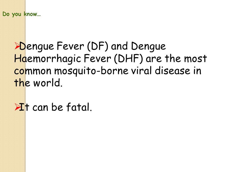 Symptoms of Dengue Fever Example of a skin rash due to dengue fever