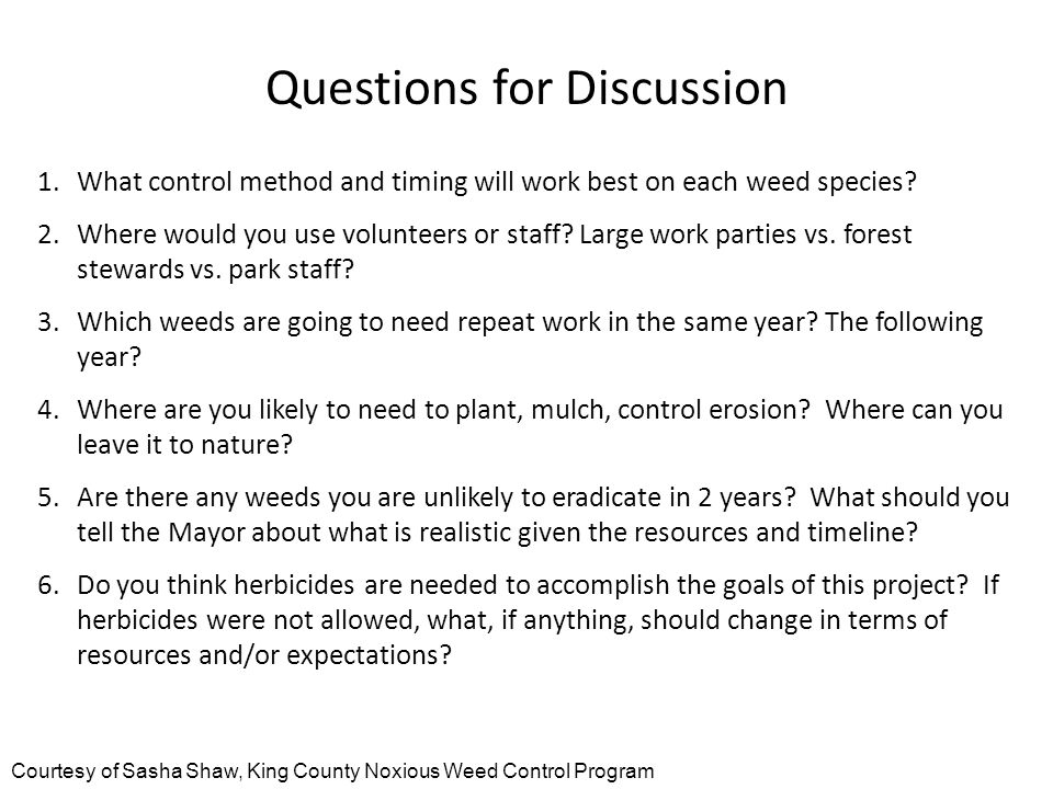 Questions for Discussion 1.What control method and timing will work best on each weed species.
