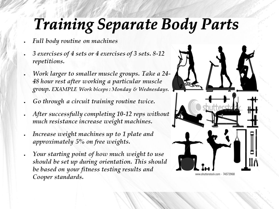 Training Separate Body Parts ● Full body routine on machines ● 3 exercises of 4 sets or 4 exercises of 3 sets.