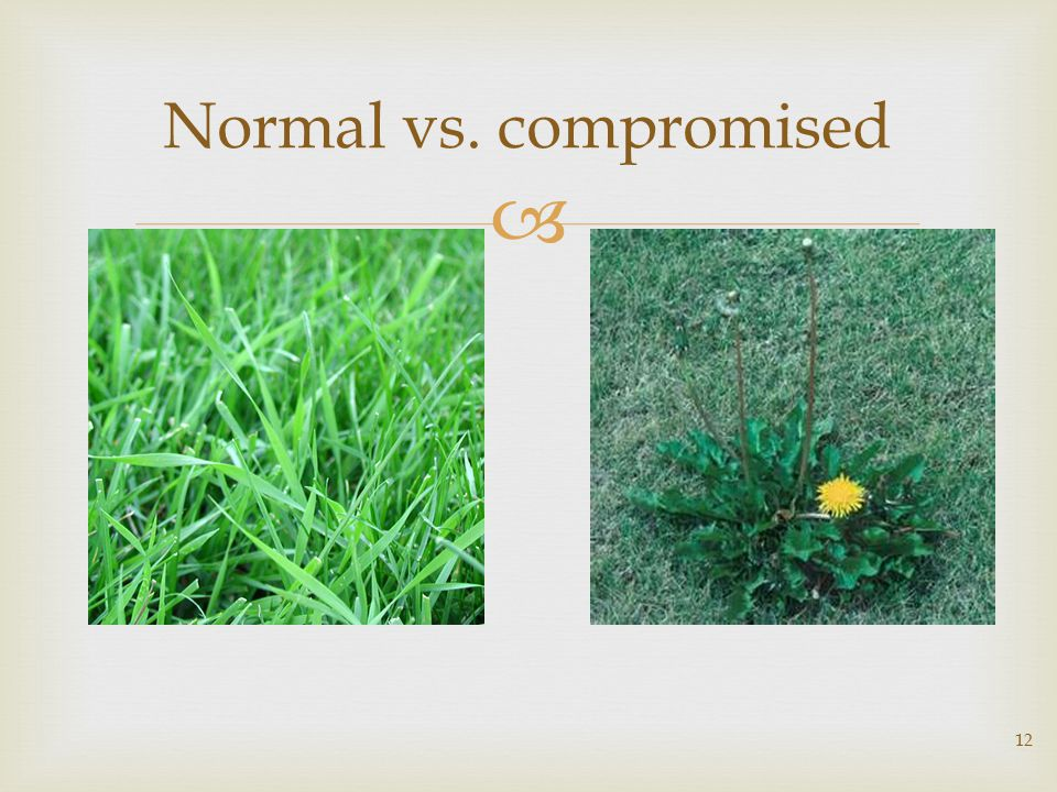  12 Normal vs. compromised
