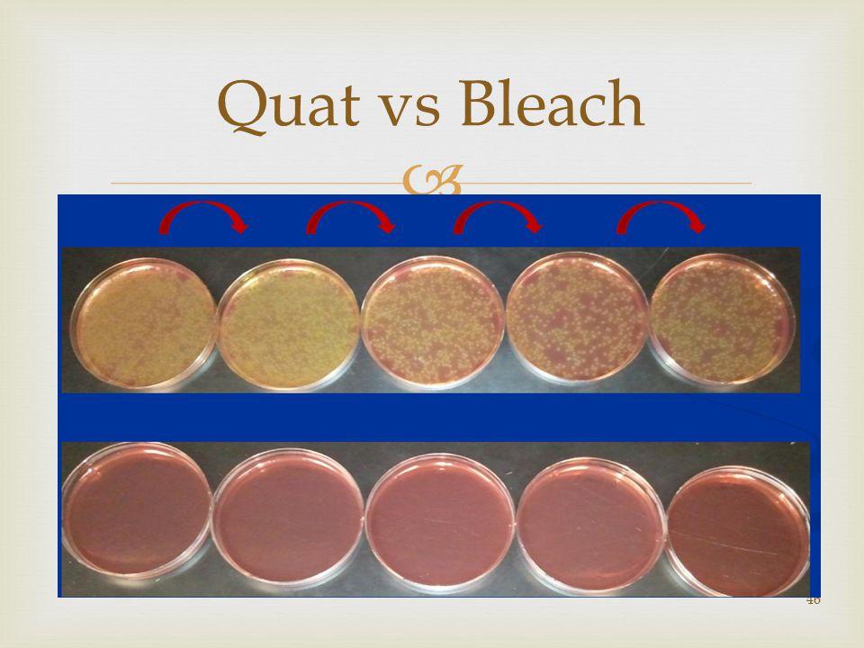 46 Quat vs Bleach