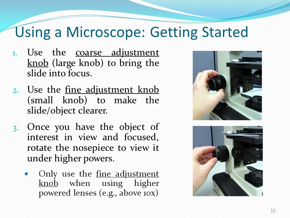 Using a Microscope: Getting Started 1.