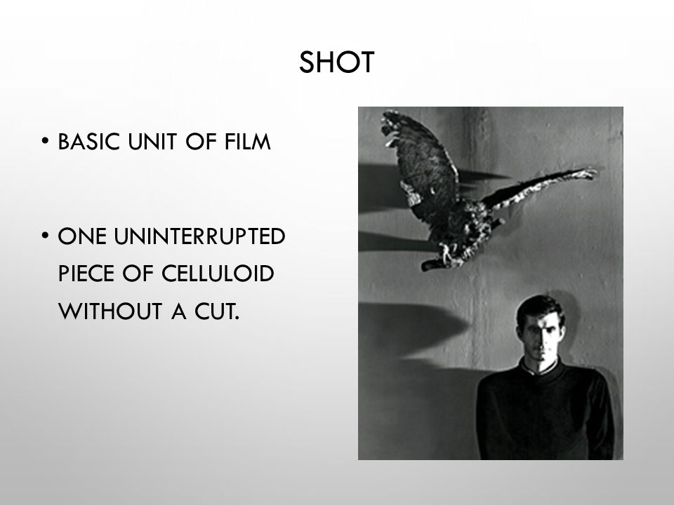 SHOT BASIC UNIT OF FILM ONE UNINTERRUPTED PIECE OF CELLULOID WITHOUT A CUT.
