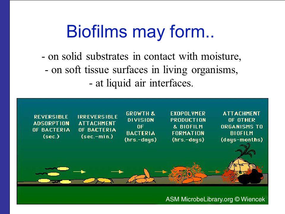 Biofilms may form..