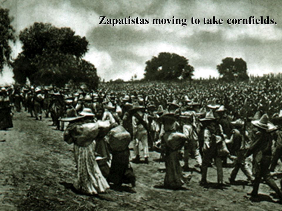 Zapatistas moving to take cornfields.