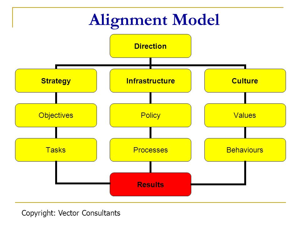 Alignment Model Copyright: Vector Consultants
