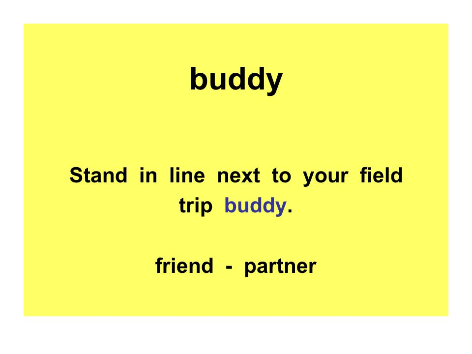 buddy Stand in line next to your field trip buddy. friend - partner