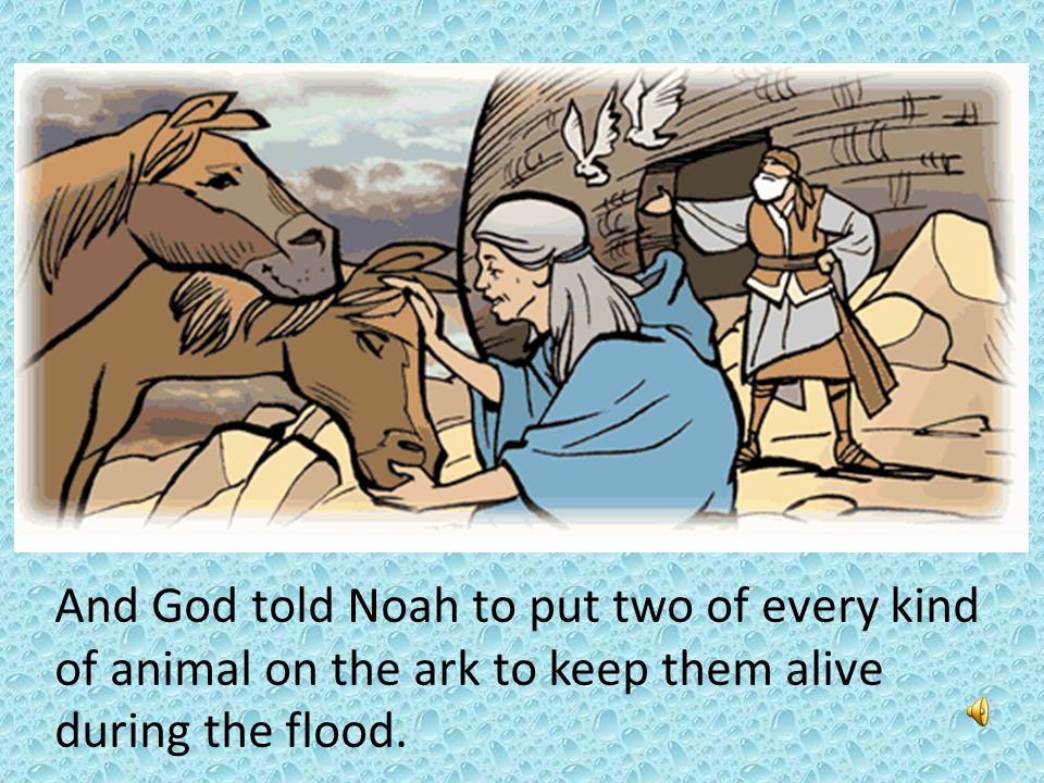And God told Noah to put two of every kind of animal on the ark to keep them alive during the flood.