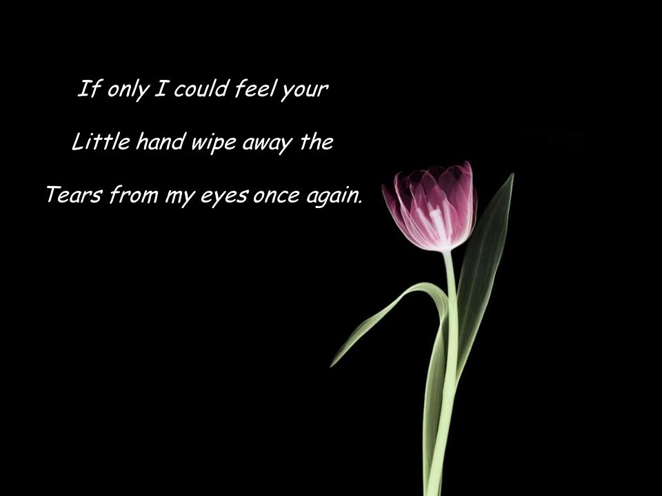 If only I could feel your Little hand wipe away the Tears from my eyes once again.