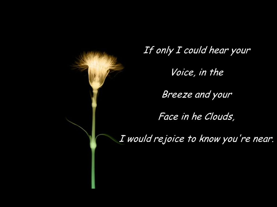 If only I could hear your Voice, in the Breeze and your Face in he Clouds, I would rejoice to know you re near.