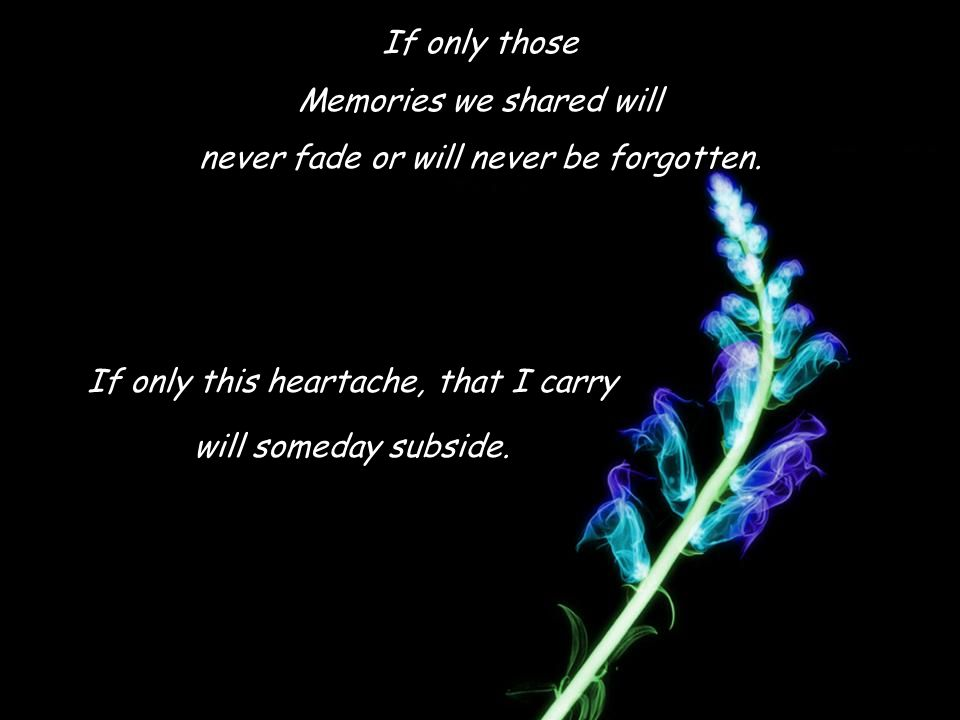 If only those Memories we shared will never fade or will never be forgotten.