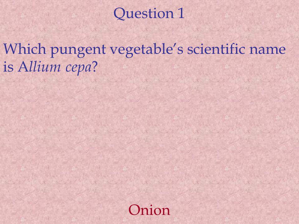 Question 1 Which pungent vegetable's scientific name is A llium cepa Onion