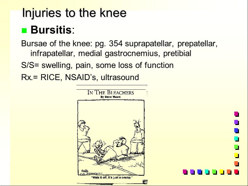 Anatomy of the Knee n Meniscus n Shock n Shock absorber and keeps femur in place n Lateral n Lateral = O n Medial n Medial = C