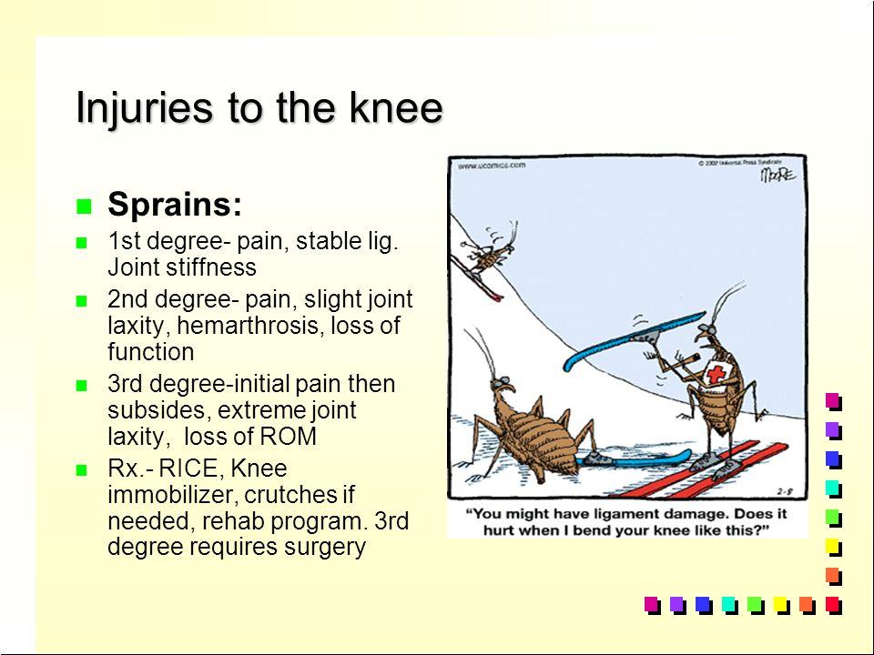Injuries to the knee n n Bursitis: Bursae of the knee: pg. 354 suprapatellar, prepatellar, infrapatellar, medial gastrocnemius, pretibial S/S= swellin