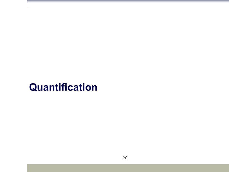 20 Quantification