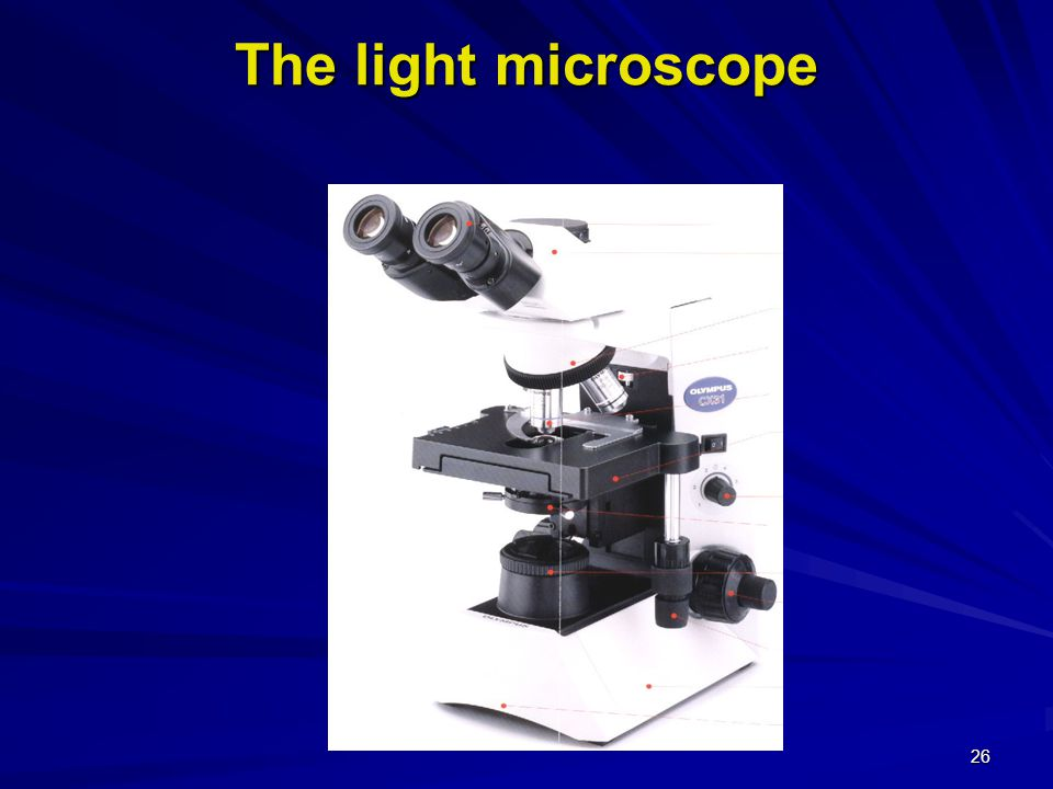 The microscope Types of microscopes Types of microscopes 1- Light microscope: 1- Light microscope:  Use light beams and lenses  The most common one used in the lab  Max.
