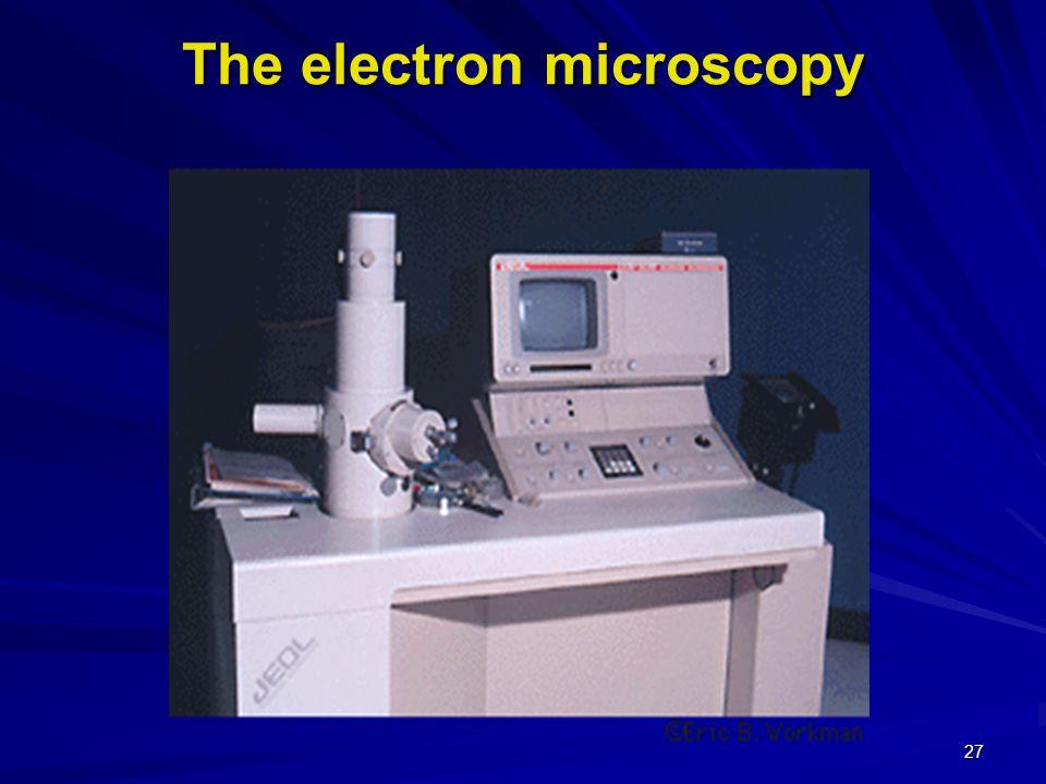 26 The light microscope