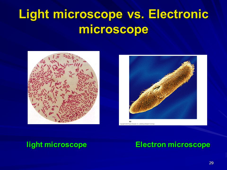 29 Light microscope vs. Electronic microscope Electron microscope light microscope