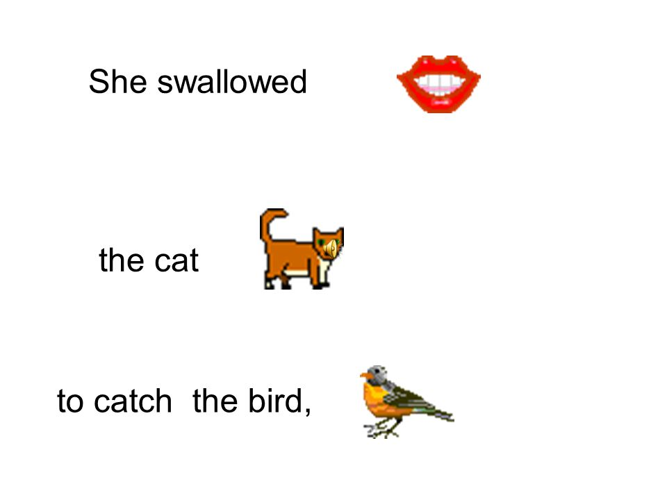 She swallowed to catch the cat the dog