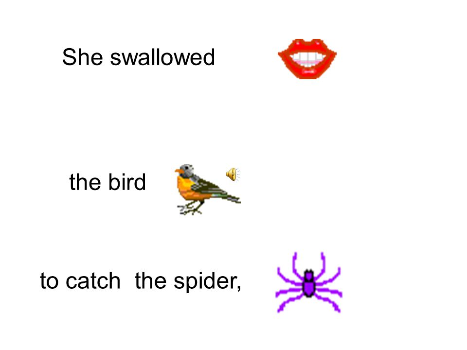 She swallowed to catch the bird, the cat