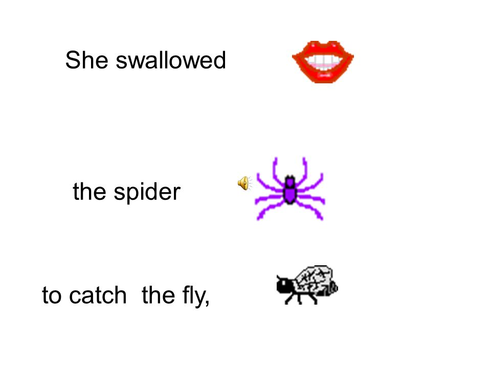 She swallowed to catch the spider, the bird