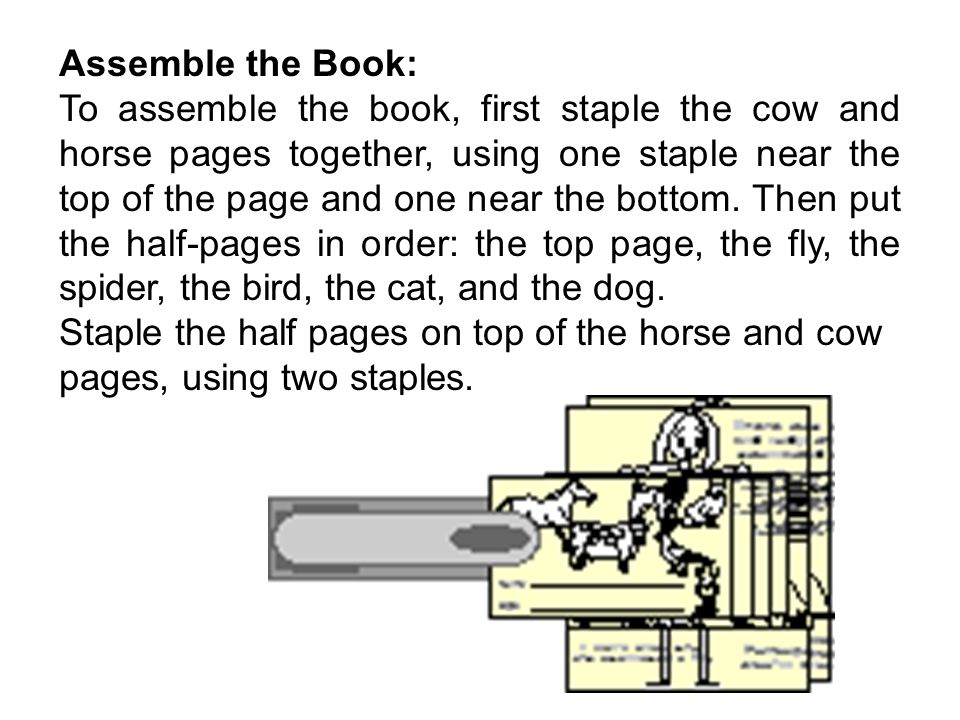Instruction: Cut out the Pages: Cut along the three horizontal dotted lines (for the pages with the top page/fly, the spider/bird, and the cat/dog).