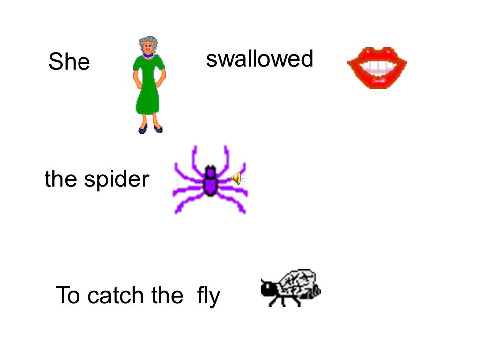 swallowed She To catch the fly the spider