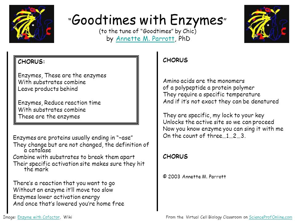 """ Goodtimes with Enzymes "" (to the tune of ""Goodtimes"" by Chic) by Annette M. Parrott, PhDAnnette M. Parrott Enzymes are proteins usually ending in ""–"