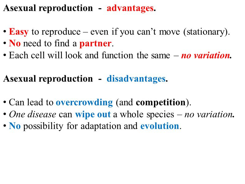 Asexual reproduction - advantages. Easy to reproduce – even if you can't move (stationary).